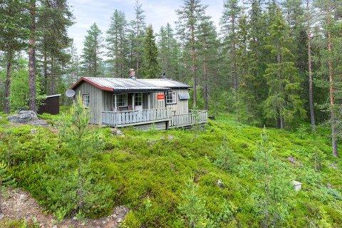 BILLIGST: Denne nytta ligger ved Bondalsveien i Tuddal. Og er den billigste på hyttemarkedet i Øst Telemarkregionen akkurat nå.