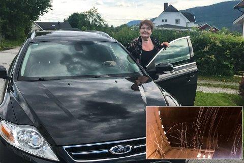 SKADEVERK: Marit Hagen regner med at det blir dyrt å lakkere over krusedullene (innfelt) som går tvers over panseret på bilen hennes.