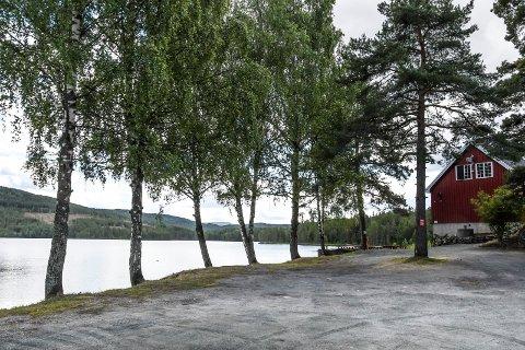 ETTERSPURT: Hans Gunnar Haave forteller at en god del bobilturister som er innom på Elgsjø Kafe gir uttrykk for at de gjerne skulle hatt en bobilcamp akkurat her.