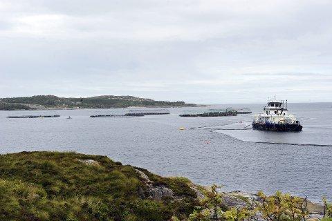 Synliggjøre: Kristiansund og Nordmøre Næringsforum (KNN) og Kristiansund kommune skal synliggjøre regionen og muligheten som ligger her på Aqua Nor.