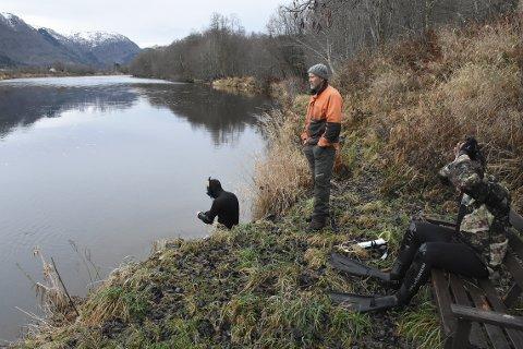 SIKKER: Arne O. Sæter i Surna elveierlag er rimelig sikker på at det var oppdrettslaks som ble observert i Surna på slutten av oktober.