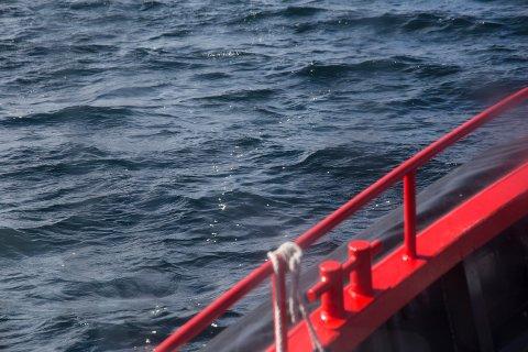 Popcorn simulerer oljesøl, her avbildet under en NOFO-øvelse på Bolgsvaet.