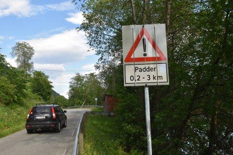 VARSLER: For noen uker siden kom det opp skilt som varlser om at padder krysser fylkesveien på Nordsida i Surnadal.