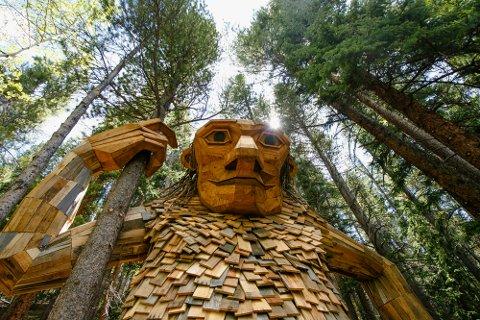 Et slikt troll, bygget av den danske kunstneren Thomas Dambo, kan bli satt opp i Rindal. Dambo bruker treavfall til å bygge sine troll, og arbeidet gjøres vanligvis sammen med dugnadsgjenger lokalt.