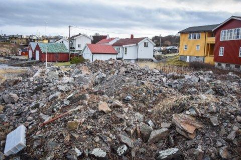 Nabo Bjørn D. Dahl protesterer på måten grunneier har gjennomført miljøkartlegging på.