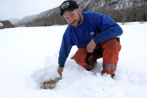 HÅP: Under snøen er det faktisk grønt gress på gang, konstaterer Lars Ole Gravvold.