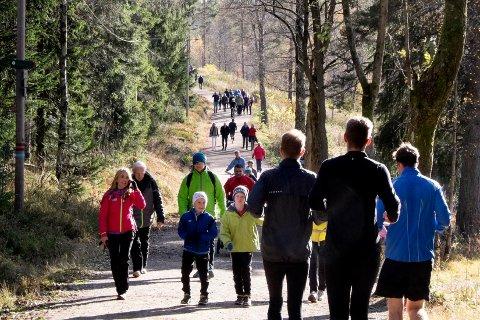På dette bildet bruker folk hele bredden av skogsveien, og holder til høyre når de passerer møtende folk. Men er det riktig?