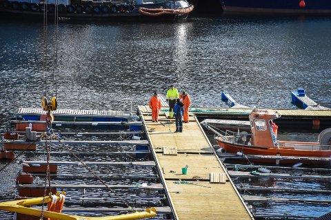 – Det er ikke medlemmene som har etterspurtdette, menen helt naturlig følge av at ting blir slitt og gammelt, sier styreleder i Kristiansund Småbåtlag, Roger Solli-Sæther.