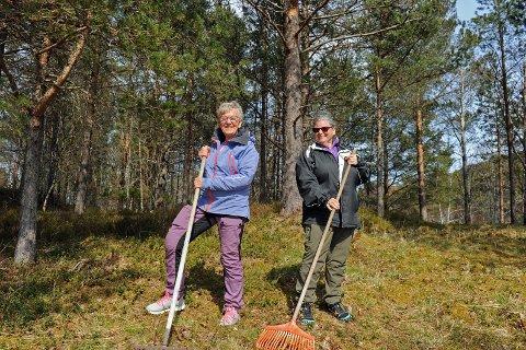 Rakartausene Sigrun Bjørshol og Astrid Fladset og de andre helselagsdamene er flittige brukere av riva for at ikke Omfarøya skal gro igjen.