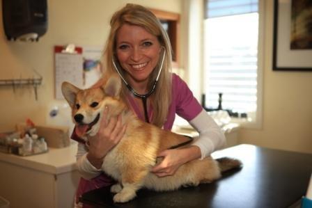 ENGASJERER SEG: Veterinær Trude Mostue påpeker at «gatehunder» ikke er en egen rase. Det er det nemlig mange som tror.