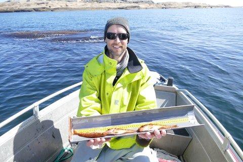 PÅ MÅLEBRETTET: Even Moland fra havforskningsinstituttet viser torskeyngel på målebrettet. Nå skal biter av finnene gentestes. På den måten finner forskerne ut om fisken er fra kysttorskstammen eller om den hører hjemme på dypet i Skagerrak.