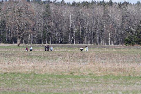 FIKK SPINN PÅ SKJERMEN: Ulykken skjedde på jordet mellom flystripa og Jarlsberglinna.
