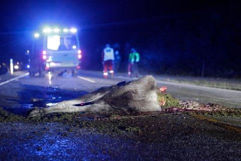 NØDETATENE RYKKET UT: To uheldige biler fikk et møte med denne helgen like før midnatt lørdag.