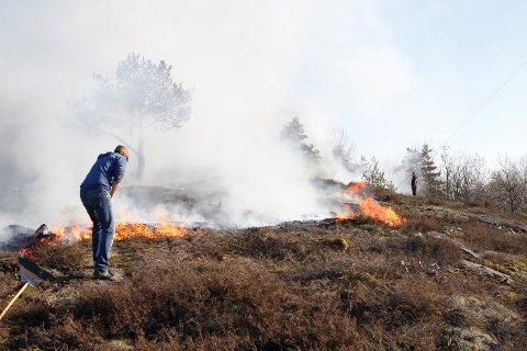 STO I BRANN: Et større område på Tjøme tok fyr tidligere denne uka.