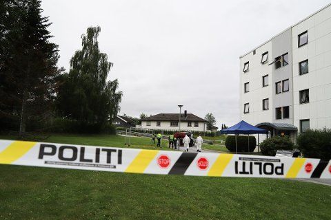 En kvinne ble knivdrept på Karrestad forrige uke. En Vestfold-mann er pågrepet og siktet for drapet.