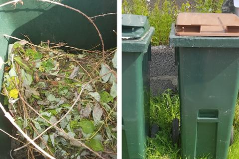 USORTERT: Hageavfall i matavfallet gjør at Vesar ikke henter søppelet.