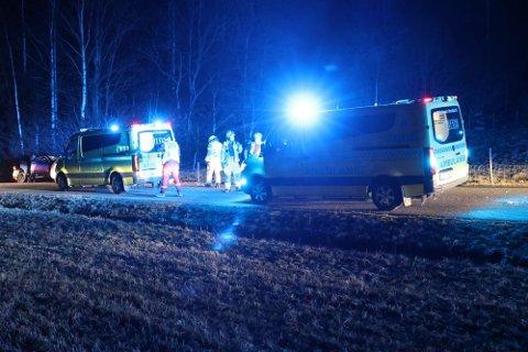 KJØRTE UT: Tre mindreårige jenter ble skadd da en bil kjørte av veien i Andebu.