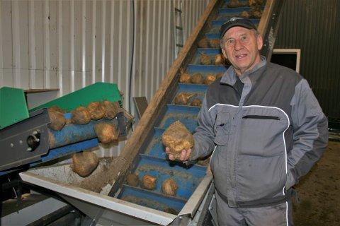LEVEBRØD: Johannes Dyste har drevet med kålrot siden 1974, og er daglig leder ved Toten Kålrotpakkeri i tillegg til selv å produsere mellom fire og fem hundre tonn kålrot i året.