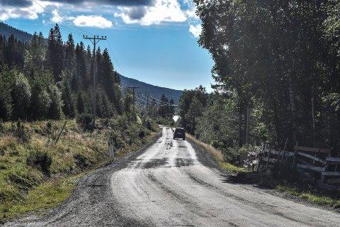 NYTT DEKKE: Torsætervegen får nytt dekke. Det betyr trolig ventetid for bilistene når det ene kjørefeltet stenges.
