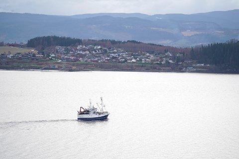 Fiskebåten Edna Synnøve mellom Trones i Verdal og Hylla på Røra dagen før brislingefisket starter.