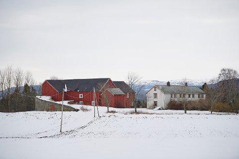 BRANNØVELSE: Bygninger på adressen Alstadhaugvegen 83 på Nesset i Levanger skal brennes ned i forbindelse med brannøvelser tirsdag og torsdag denne uka.