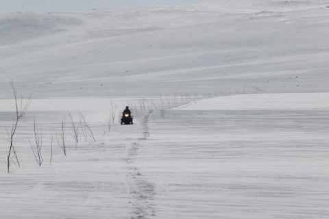 Snøscooteren er populær i Nord-Trøndelag, og antall maskiner øker kraftig.  Foto: Ørn E. Borgen / NTB