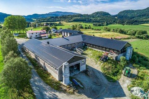 ANER: På Ner-Brørs i Namdalseid har det sannsynligvis vært gårdsdrift siden middelalderen, nå er bruket til salgs med en prisantydning på 15 millioner kroner