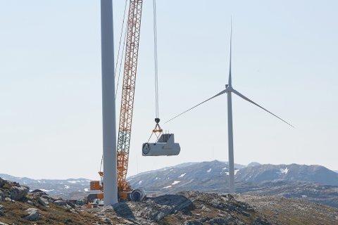 NATURINNGREP: – Jeg hadde en mistanke om at det kunne være overskridelser, men trodde ikke at de var så store, sier Knut Botten, som i sitt masterarbeid har funnet ut at vegene i et landets største vindkraftverk ble bygget fire ganger bredere enn det opprinnelig ble søkt om.