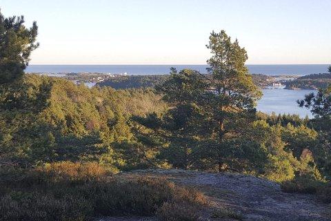 Praktfull utsikt: Normannvik Kulturstier ligger kystnært, og byr på flere spektakulære utsiktspunkt. Her fra Brenningskjærhytta. Foto: Normannvik Vel