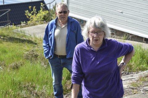 Askerøybukta: Allaug Wisth (foran) har sammen med to andre påklaget politikernes delingstillatelse. arkivfoto
