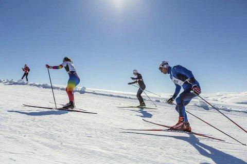 Sterkt løp: Elling Solfjeld (nærmest kamera) gikk bra i Haukelirennet sist helg. Dette bildet er fra samme renn i fjor, da han også deltok. Privat foto.
