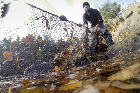 Tid for innspill: Etter at kommunestyret gjorde et ulovlig vedtak, legges fiskeforbudssaken nå ut til høring i fem uker.