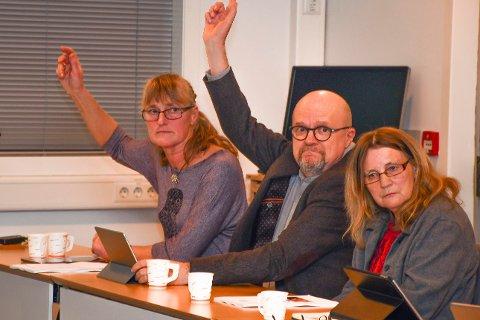 Her sier Line Mørch (V) og Andreas Westheimer (MDG) nei til gummikuler. De to fikk bare støtte fra varaordfører June Marcussen (V). Til høyre i bildes ses Tiri Wigan, som stilte som vara for Anne Killingmo på tirsdagens kommunestyremøte.