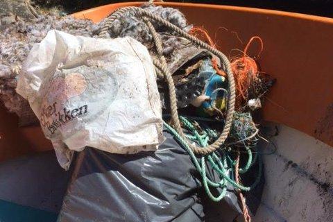 Marin forsøpling er et globalt problem. Dette var resultatet av en ryddeaksjon i tvedestrandsskjærgården som ble utført av noen feriegjester for et par år siden.