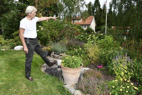 Invaderes av bier: - Gleden ved å være ut i hagen er borte når det er bier over alt, sier Hans A. Gangsaas. Han peker mot nabo Trygve Sjøstad Nilsens eiendom, hvor bikubene står. Foto: Marianne Drivdal