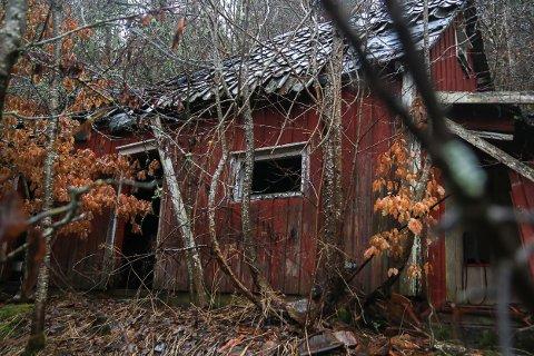 Dette huset i Kroken ved Nes Verk brant på begynnelsen av 90-tallet, og ble nærmest totalskadet. I nesten tretti år har restene av bygget stått og forfalt her, 40 - 50 meter fra fylkesveien.
