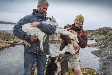 «Fra dørk til dør»: Det heter det nye konseptet til Ragg-duoen Anders Lyche Oppegaard og Tor Granerud. Nå skal de kjøre rundt med andre ting enn bare geiter i skjærgården. Næringsfondet bidrar med 40.000 kroner til markedsføring. Her er de avbildet på Klåholmen mai i 2015. Foto: Arkiv
