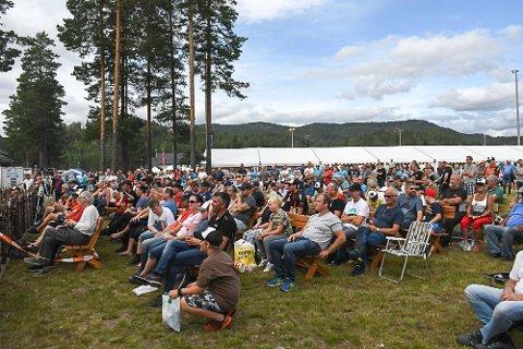 Arrangørene i Treungenfestivalen ønsket å ha konserter og camping på denne plassen som brukes til Dølemomarknaden hvert år. Dette bildet er fra Dølemarknaden i fjor.