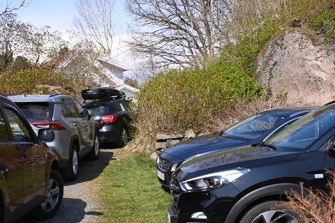 Det var kø av biler på dagens visning ved Eikelandsfjorden, mellom Tvedestrand og Arendal.