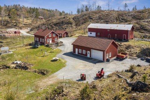 Flere bygninger: Gården på Lindland, som kan betegnes som et stort småbruk, har 265 mål skog, og flere bygninger i tillegg til bolighuset. Foto: DNB Eiendom