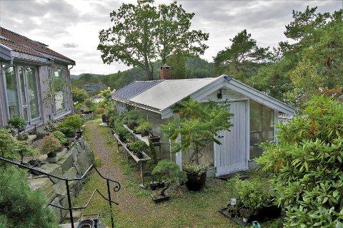 Borøy: Det er drivhuset i forgrunnen som huseierne ønsket å utvide med ni kvadratmeter, men det er ikke greit mener både byggesaksavdelingen i Tvedestrand kommune og politikerne. Privat foto
