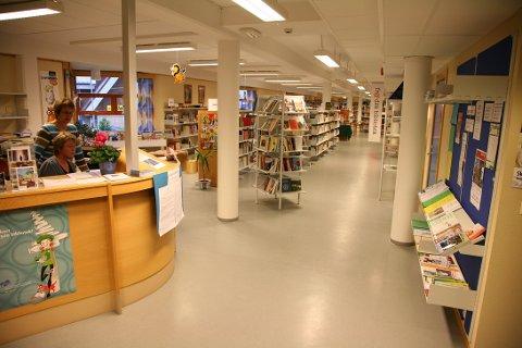 Arkivfoto, Sør-Aurdal folkebibliotek.