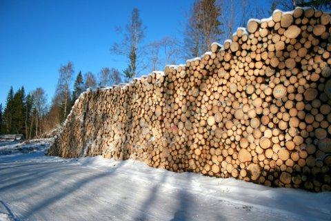 Viken Skog SA er Norges største skogeiersamvirkeforetak, eid av i underkant av 10 000 skogeiere på Østlandet. Konsernet har hovedkontor i Hønefoss, og fem distriktskontor.