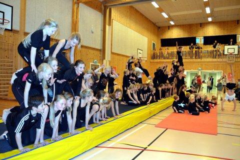Utgreiing om hall: Turngruppa i Vestre Slidre er stor og aktiv, og treng meir plass.