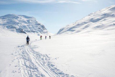 Minst én av tre nordmenn tar fri fra kildesortering når de er på hytta. – Miljøet tar ikke påskeferie, understreker Jaana Røine i Grønt Punkt Norge.