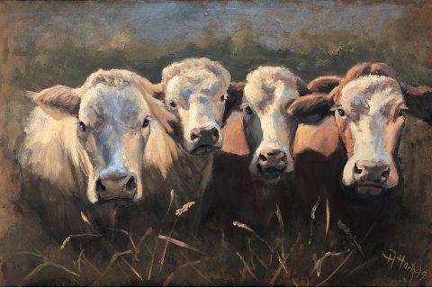 Dette er et typisk Anne Hartz-bilde, hun er fornøyd med uttrykkene i dyrenes øyne.