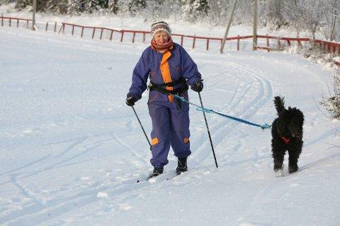 Hunder skal holdes i bånd fram til båndtvangen er opphevet.