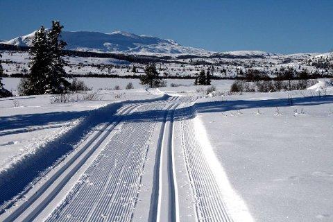 Fersk undersøkelse viser at nordmenn er bekymret for mindre snø og dårligere skiføre. Nå samler skiforeningen kunnskap om hva som kan gjøres under vanskelige forhold.