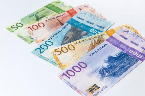 Meir pengar: Sør-Aurdal kommune har fått 1,2 millionar ekstra til næringsfondet sitt.
