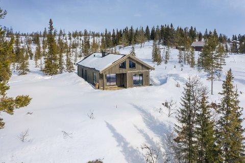 NYLIG SOLGT: PrivatMegleren Valdres solgte nylig denne nyoppførte hytta i Graneisbygde 317, som ble den dyreste eiendommen solgt i Etnedal i mai.